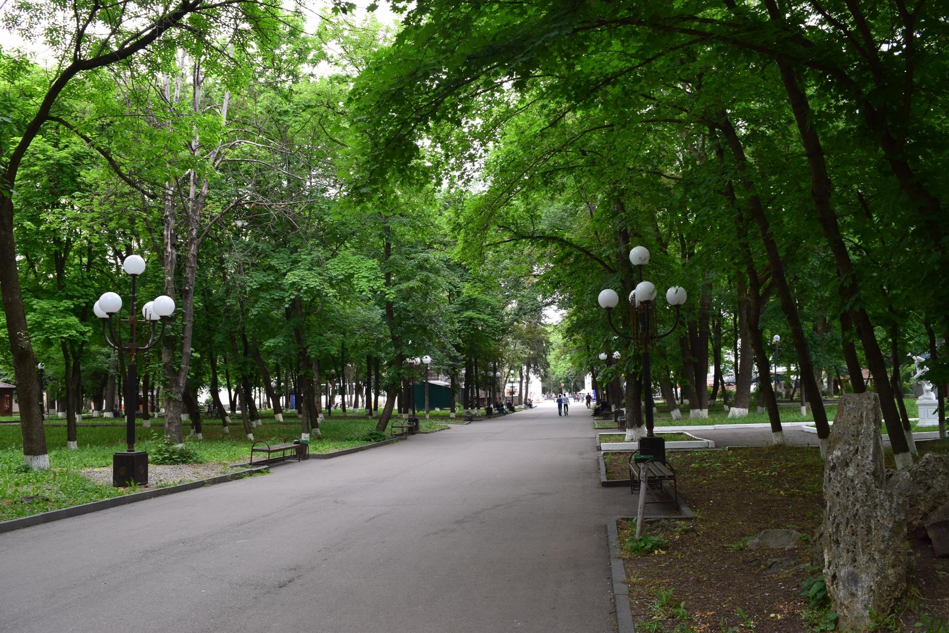 парк кирова с картинками простое безобидное